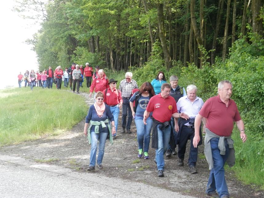 AMTC Wandertag (Hehenberg)